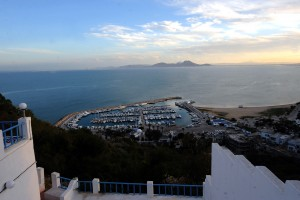 7772746493_vue-du-port-de-sidi-bou-said